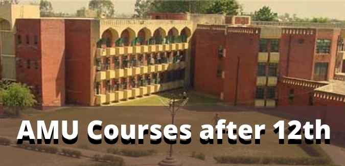 AMU Courses after 12th